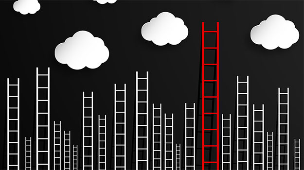 Industry or practice? A career ladder comparison